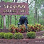 My Rainy Day Adventure at Neuseway Nature Center
