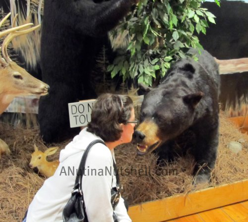 Neuseway Nature Center bear