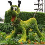 Epcot-Flower-Garden-Festival-Pluto