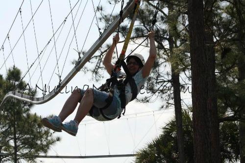 Rattlesnake-zipline-roller-coaster