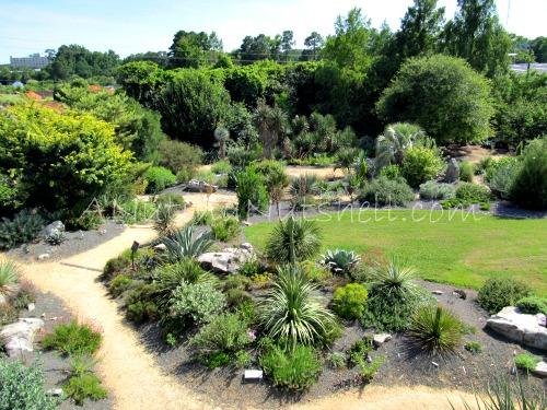 JC Raulston Arboretum Scree and Xeric Gardens