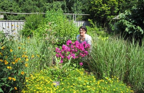 JC Raulston Arboretum gardens