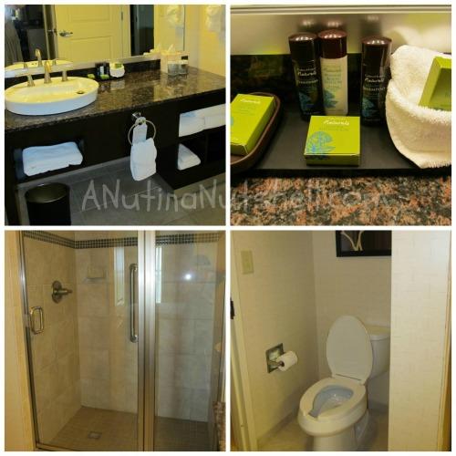 Embassy-Suites-RDU-bathroom