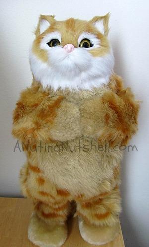 party-animal-dancing-pet-speaker-brown-cat