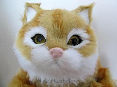 party-animal-dancing-pet-speaker-cat