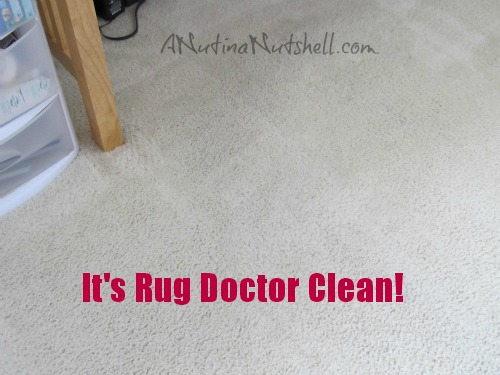 Rug Doctor clean carpet