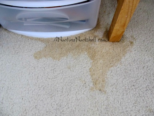 carpet-stain-diet-soda