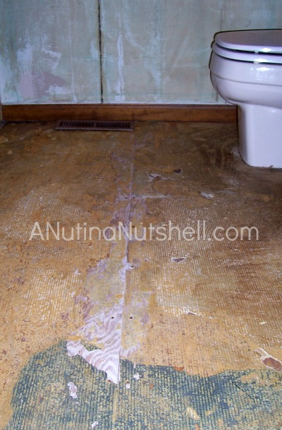 bathroom flooring - ripped out carpet
