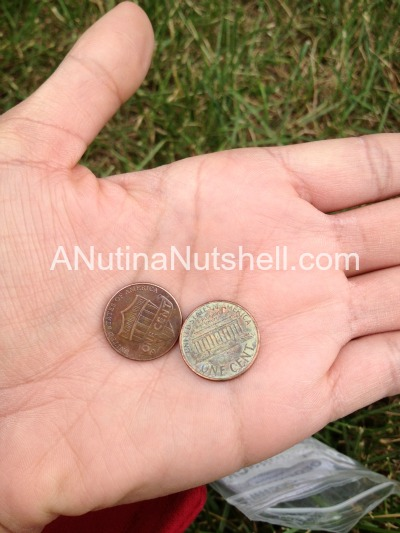 geocaching two cents