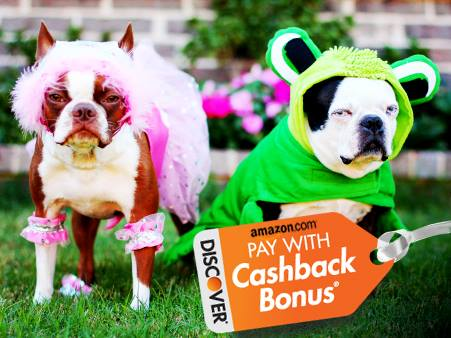 Amazon pay with cash back bonus - Discover card