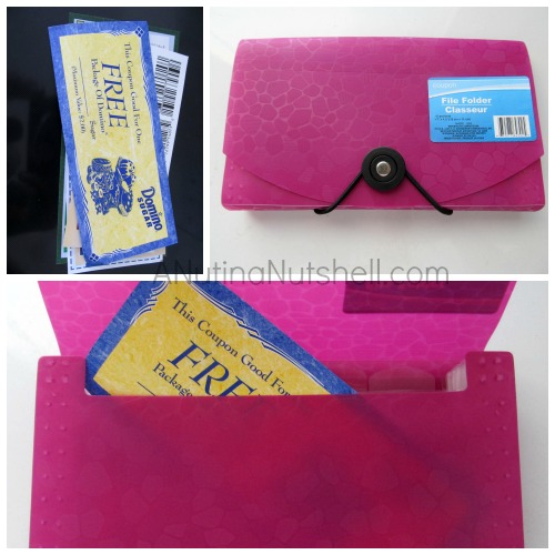file folder -coupon folder - Dollar Tree