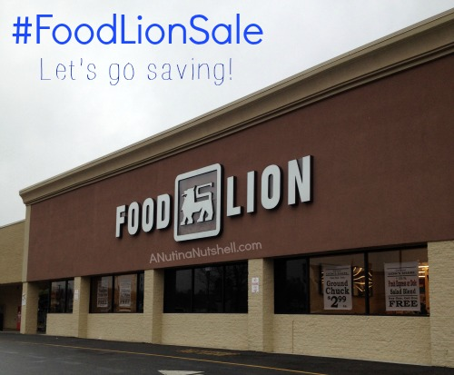 Food_Lion_Sale