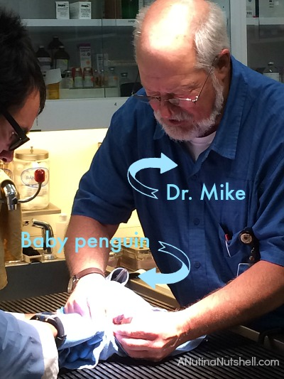 Dr Mike - Monterey Bay Aquarium