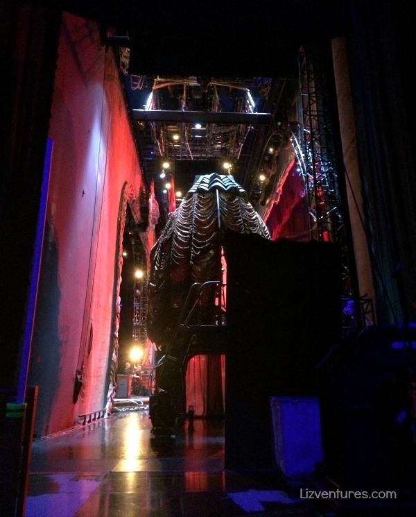 backstage Cirque du soleil zarkana