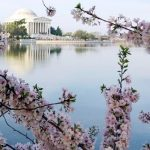 6 Tried-and-True Spring Break Destinations for Families
