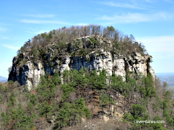Big Pinnacle - Pilot Mountain State Park