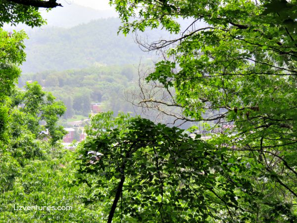 view from hiking trails - Jackson County