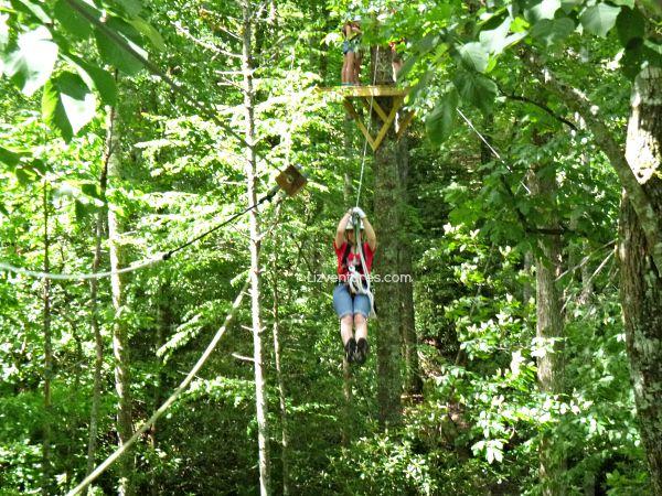 ziplining - Sapphire Valley Resort NC