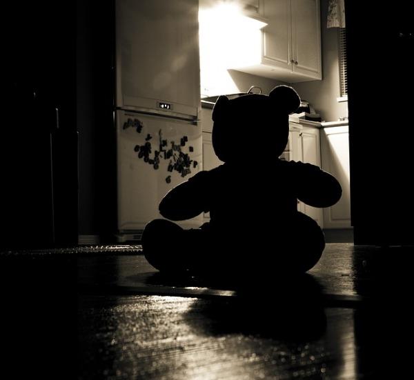 teddy bear silhouette in dark