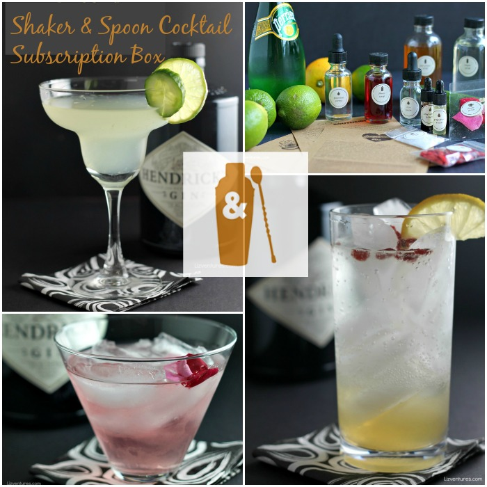 Shaker & Spoon Cocktail Subscription Box