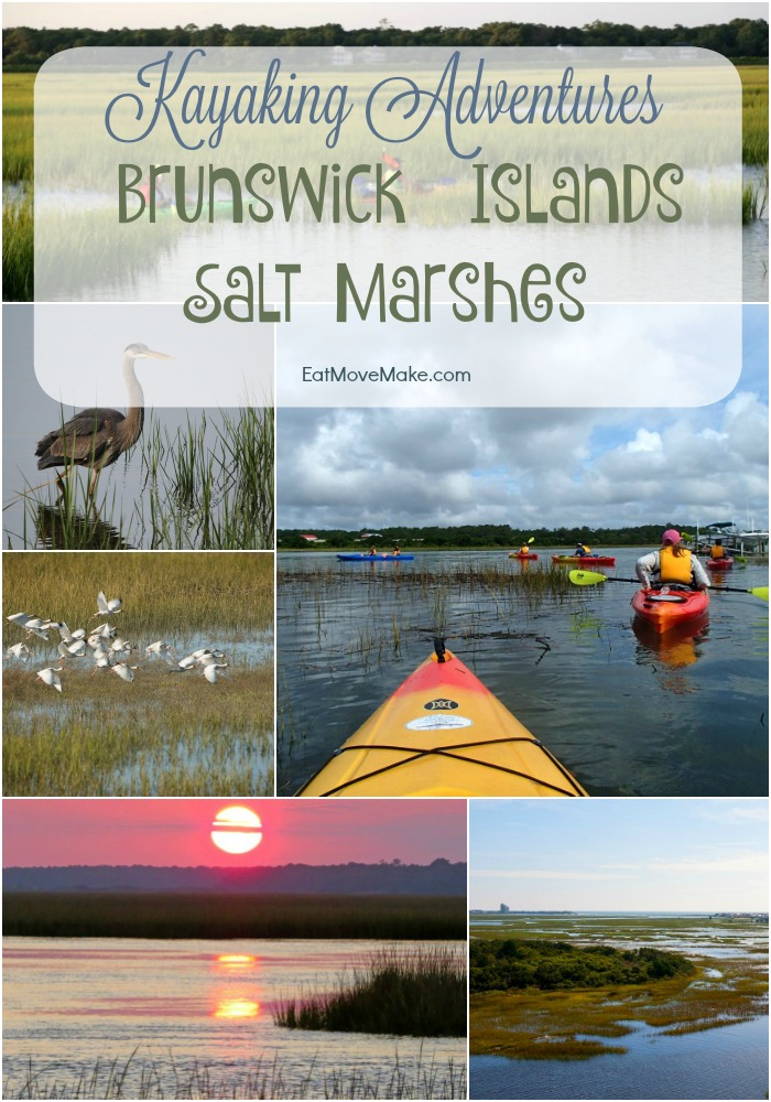 Kayaking Adventures Brunswick Islands Salt Marshes