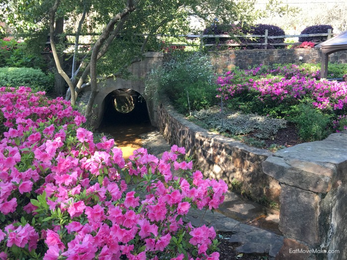 McGuire Gardens - Azalea Trail Tyler TX