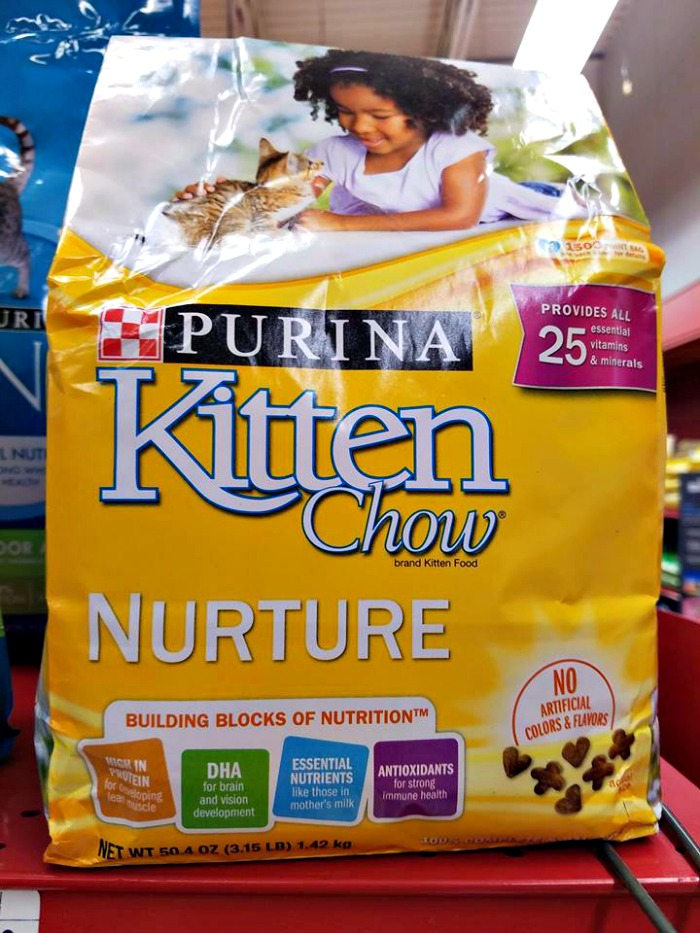 purina kitten chow pic