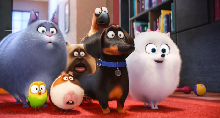 about owning the secret life of pets on home video the release