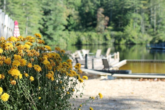 flowers-at-hampton-lake-high-hampton-inn