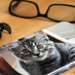 Photo Gifts for Pet Lovers That Will Make 'Em Cry Happy Tears + Giveaway