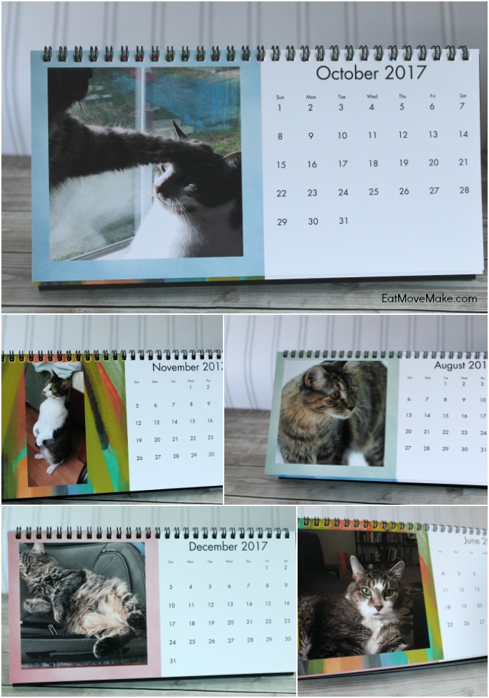 cat-desk-calendar-cvs-photo-gifts