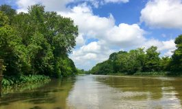 Get to Know Louisiana's Cajun Bayou