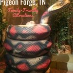 Family Friendly Attractions in Pigeon Forge