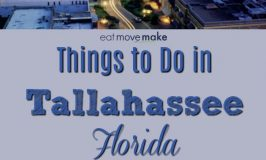 Things To Do in Tallahassee – What Not To Miss!