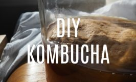How to Brew Kombucha At Home (It's Easy, Seriously!)