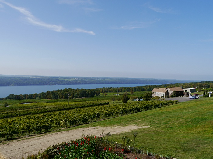 Watkins Glen Atwater Estate Vineyards