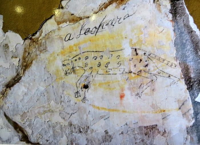 Leopard Graffiti - Shenandoah County Historic Courthouse