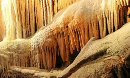 Shenandoah Caverns (with the Quirkiest Show Cave Attractions in Virginia)