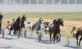 Off to the Races at Shenandoah Downs