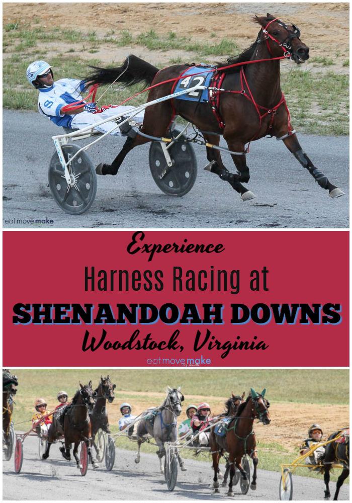 harness racing at Shenandoah Downs-Woodstock VA