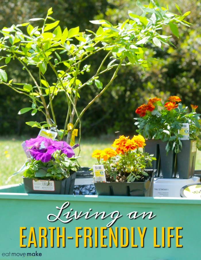 living an eco-friendly life