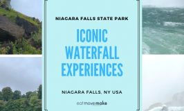 Niagara Falls State Park - iconic waterfall experiences